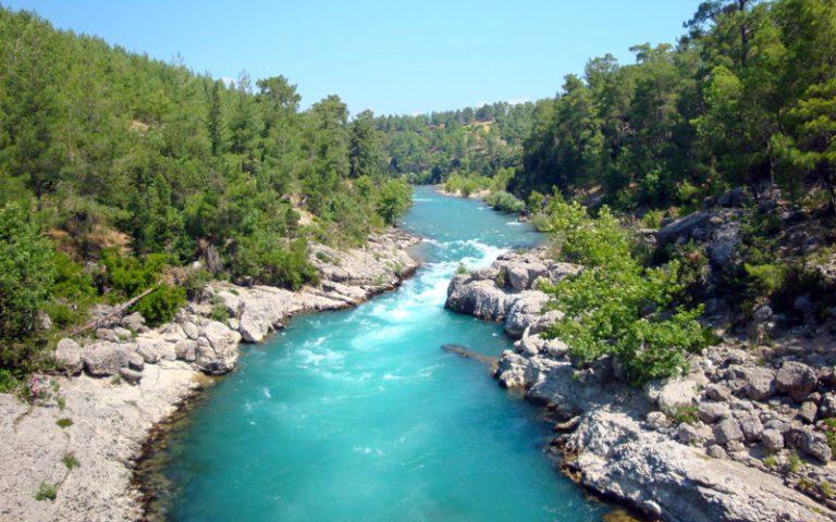 Antalya'nın Bitki Çeşitliliği ve Antalya'nın Endemik Türleri