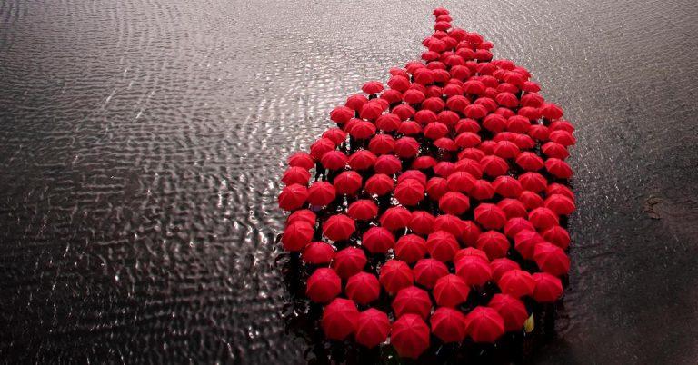 14 Haziran Dünya Kan Bağışçıları Günü – Her Kan Bir Hayattır