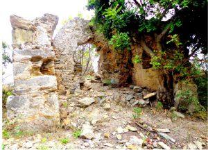 İotape Antik Kenti'ne ait tapınakların mimari özellikleri, tarihi belge olmanın da ötesinde günümüze önemli fikirler veriyor.