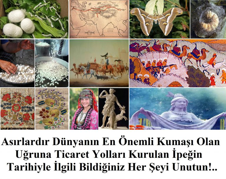 Yaban İpeği Asırlardır Orta Asya'da Üretilip İşlenen Önemli Bir Tekstil Maddesiydi (Bölüm I)